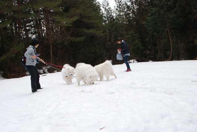今年も雪中オフ行ってきました_b0120492_17572760.jpg