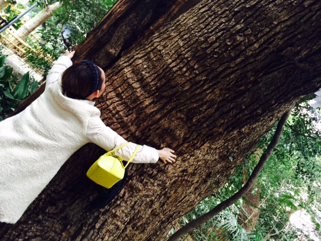 お昼神戸遊び。_a0050302_3233948.jpg