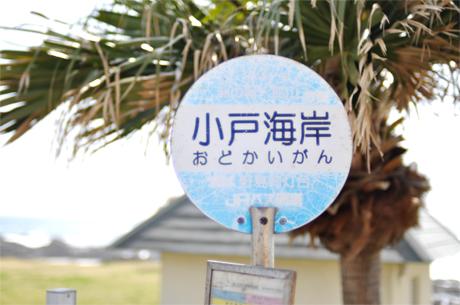 春の房総散歩 【前編】_d0174704_22311342.jpg