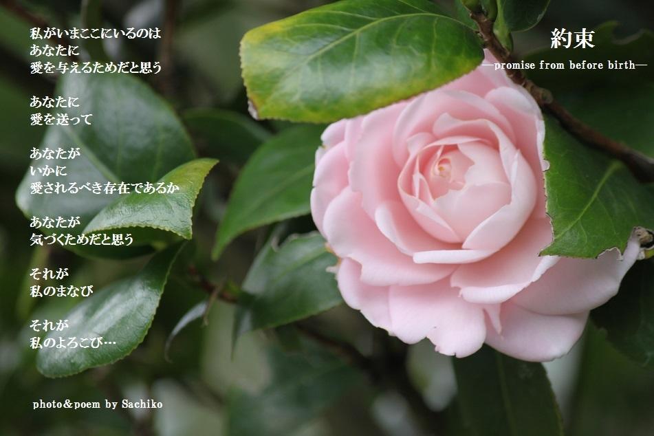 f0351844_20503764.jpg