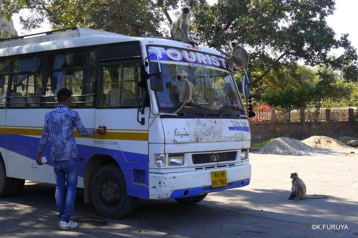 インド・ラジャスタンの旅 11 ジャイナ教の聖地ラーナクプル_a0092659_22223524.jpg
