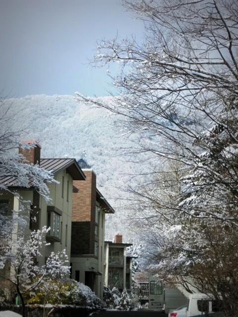 離山の雪化粧*_f0236260_1959072.jpg