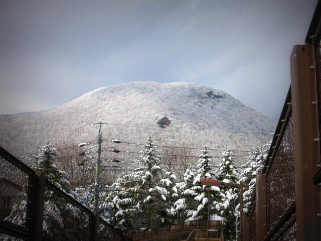 離山の雪化粧*_f0236260_1959137.jpg