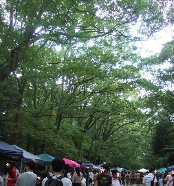 明日は、第18回森の手づくり市 京都/下鴨神社にて_a0306166_20091203.jpg