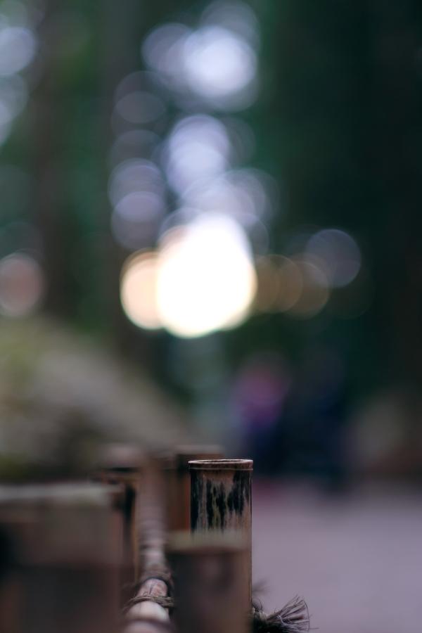 第120回 水戸の梅まつり <36> 陰陽 2016・03・12_e0143883_2140794.jpg