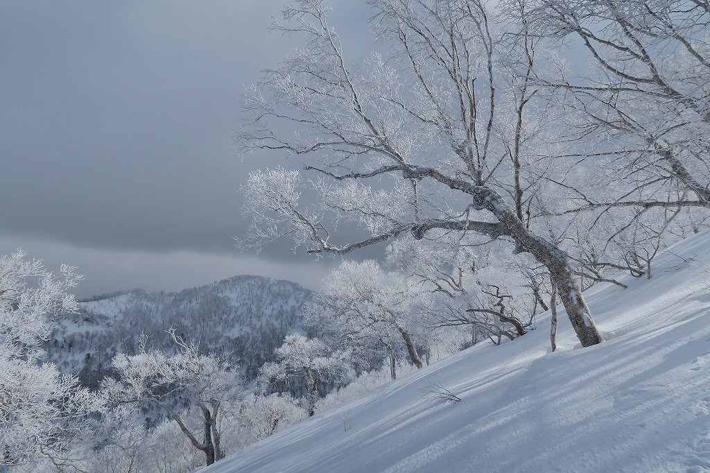 白老岳と北白老岳、3月11日_f0138096_1653419.jpg