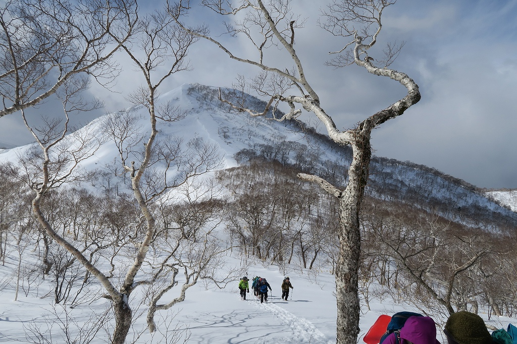 白老岳と北白老岳、3月11日_f0138096_16541611.jpg