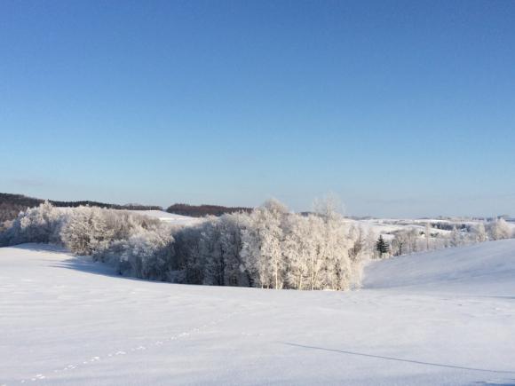 素敵な冬景色。_f0096216_08570073.jpg