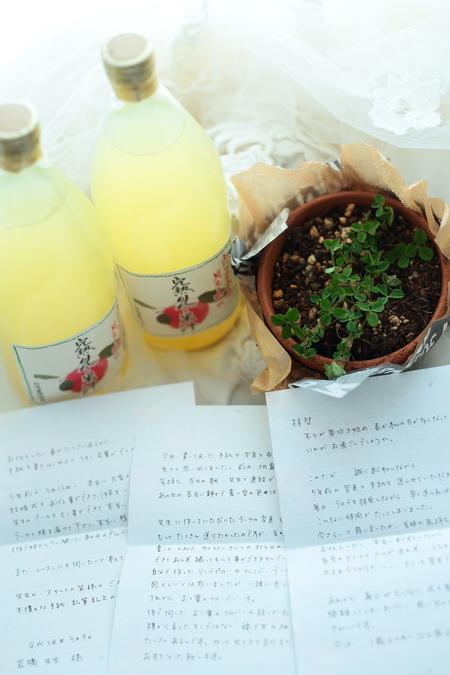 新郎新婦様からのメール 2011年3月12日に長野まで届けたブーケ_a0042928_13284390.jpg