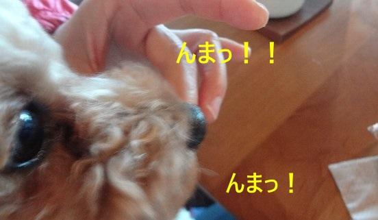 b0149340_14273369.jpg
