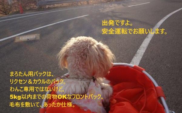 b0149340_18473848.jpg