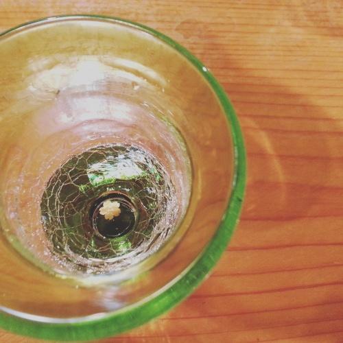 グラスに春_c0172049_20241870.jpg