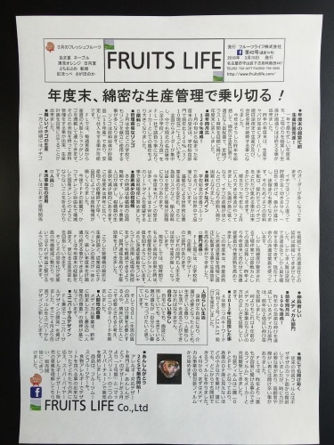 月刊 Fruits Life No.42_a0347953_11354433.jpeg