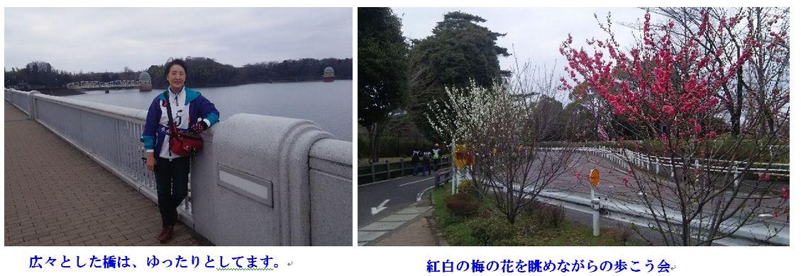 c0111581_20104677.jpg