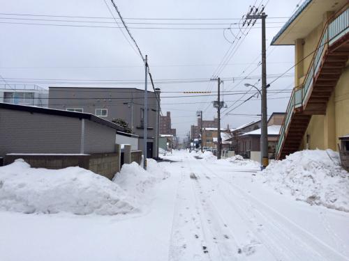 積雪2cm_a0156548_21074197.jpg