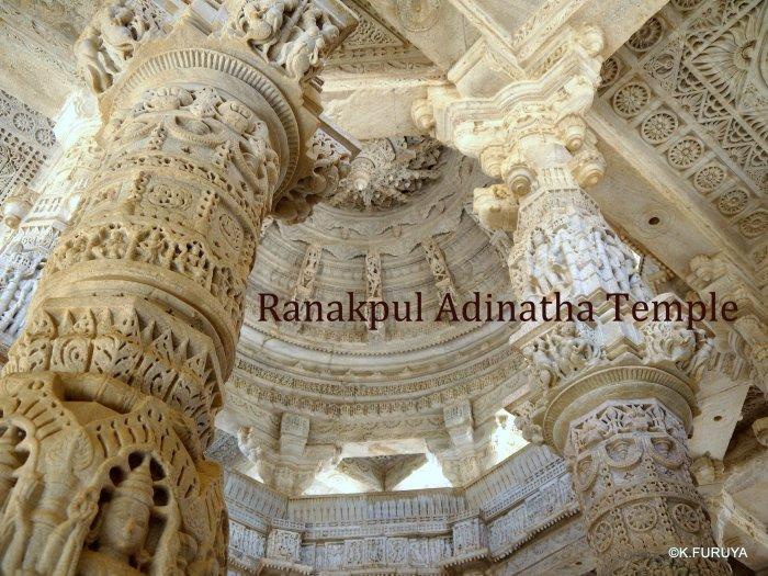 インド・ラジャスタンの旅 11 ジャイナ教の聖地ラーナクプル_a0092659_22562137.jpg