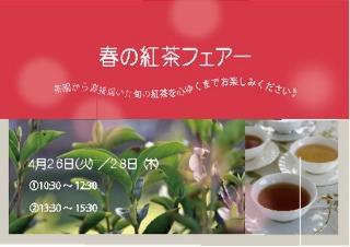 春の紅茶フェアー2016_e0260071_0305876.jpg