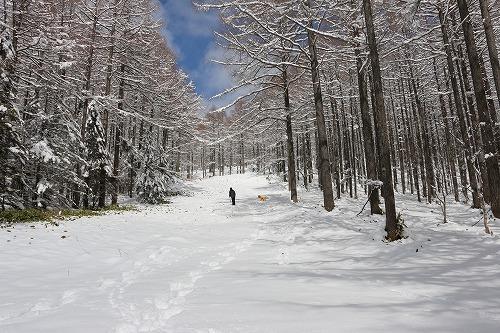 2016 Last 雪遊び_c0172184_16371134.jpg