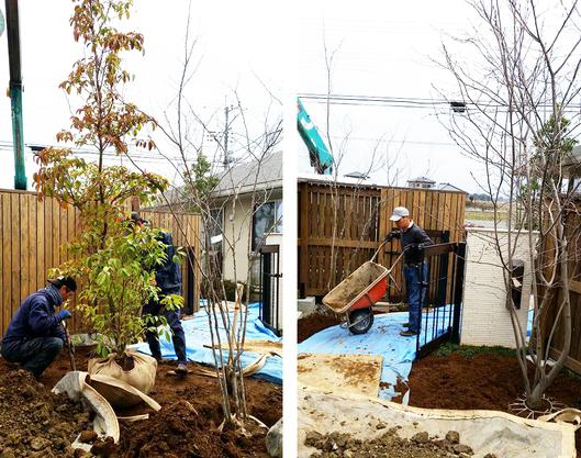 木々に彩られた暮らし 川島の家*お庭工事_d0080906_13583810.jpg