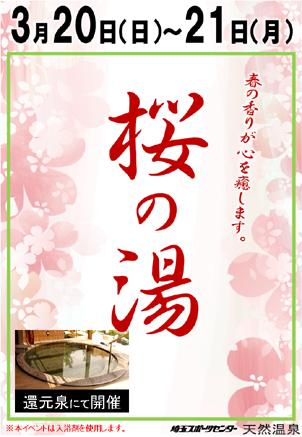 桜!_e0187507_17421342.jpg
