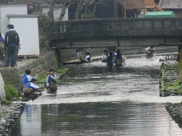 いよいよ春が目に見えてきた 今年最初の「田宿川の川そうじ」_f0141310_7261730.jpg