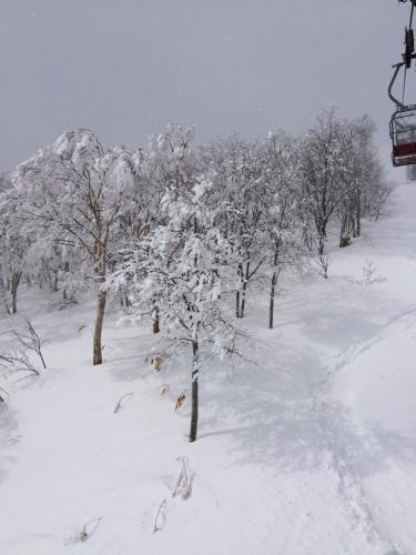 苗場に冬が戻ってきた!(≧∇≦)_c0151965_22335005.jpg