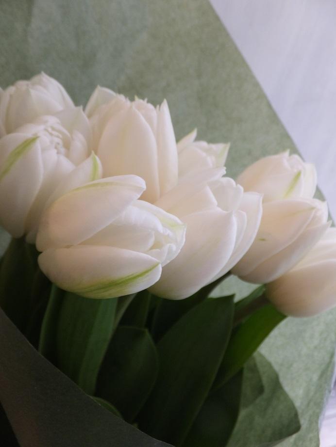 オークリーフ(お誕生日にチューリップの花を)_f0049672_18155557.jpg