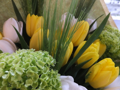 オークリーフ(お誕生日にチューリップの花を)_f0049672_1819248.jpg
