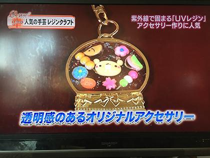 昨日のテレビ放送*_a0139874_12203452.jpg