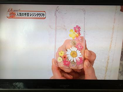 昨日のテレビ放送*_a0139874_12320634.jpg