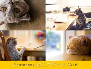 2016/4/27-5/2 『Photoback ねこアワード 2016』_e0091712_22504288.jpg