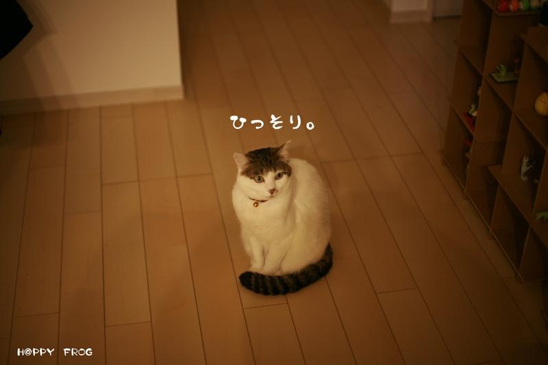 f0032042_20101343.jpg