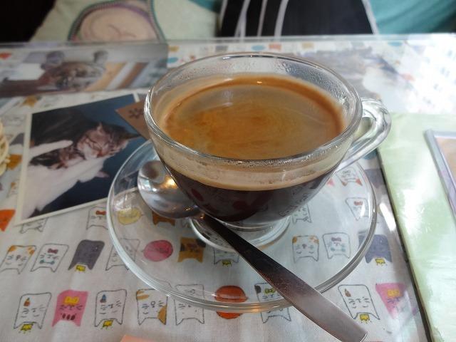 阿猫地攤(猫cafe) 銅鑼灣 _b0248150_08502854.jpg