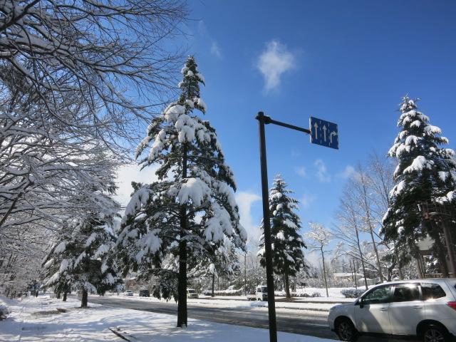 雪景色の雲場池*上雪(かみゆき)_f0236260_1449873.jpg