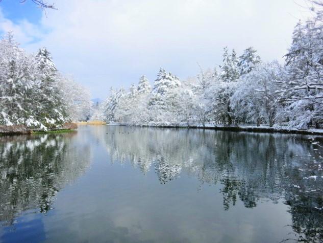 雪景色の雲場池*上雪(かみゆき)_f0236260_15302431.jpg