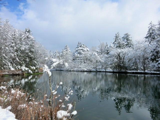 雪景色の雲場池*上雪(かみゆき)_f0236260_15382286.jpg
