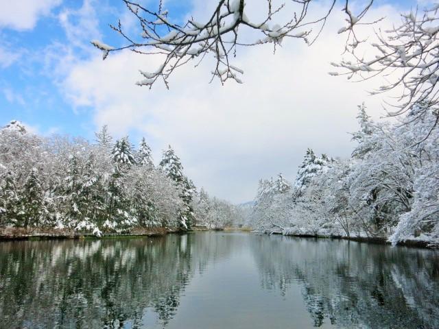 雪景色の雲場池*上雪(かみゆき)_f0236260_15432191.jpg