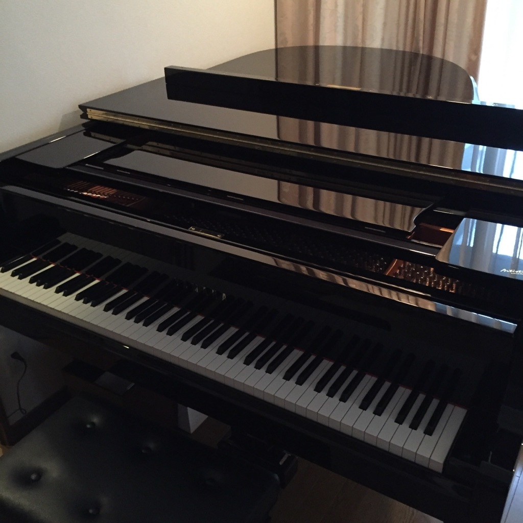 久しぶりのピアノ調律_e0344611_23573660.jpg