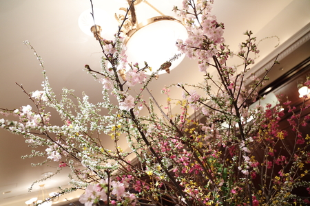 春の装花 桜と春の枝で シェ松尾青山サロン様へ_a0042928_2047577.jpg