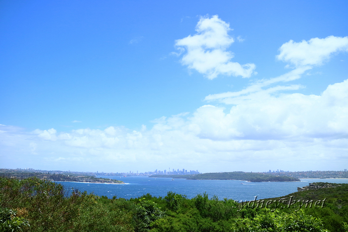 NORTH HEAD_f0084337_18094637.jpg