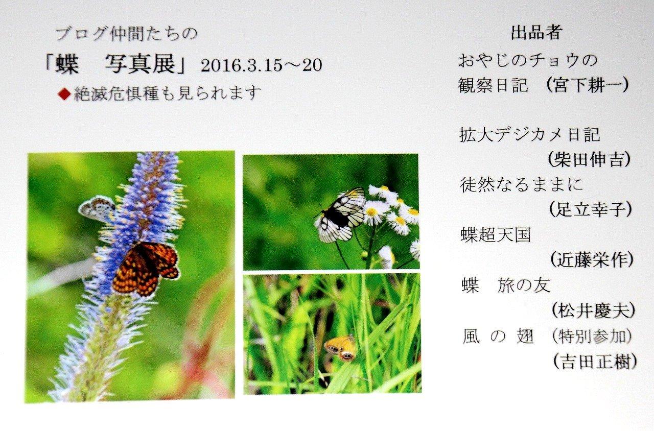 b0320769_20084272.jpg