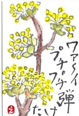 鹿児島大会のお知らせが届きました^^_a0220570_20251361.jpg