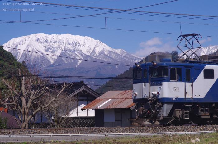 大山が顔を出す_d0309612_102828.jpg