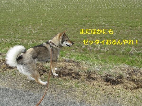 f0143123_20572900.jpg