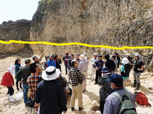 穿孔貝(せんこうがい)の化石_c0180460_10311444.jpg
