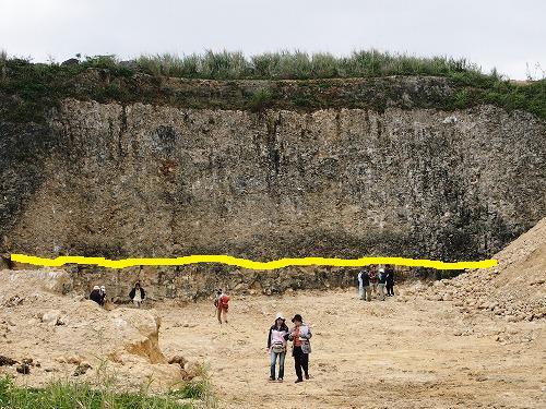 穿孔貝(せんこうがい)の化石_c0180460_10322084.jpg