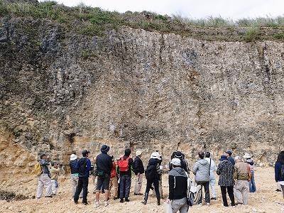 穿孔貝(せんこうがい)の化石_c0180460_10373461.jpg