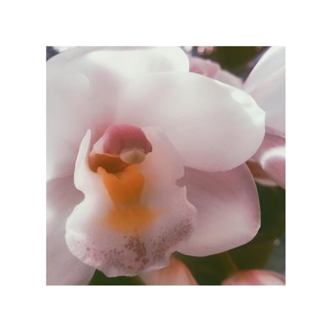 春だ春だ_f0256164_10571847.jpg