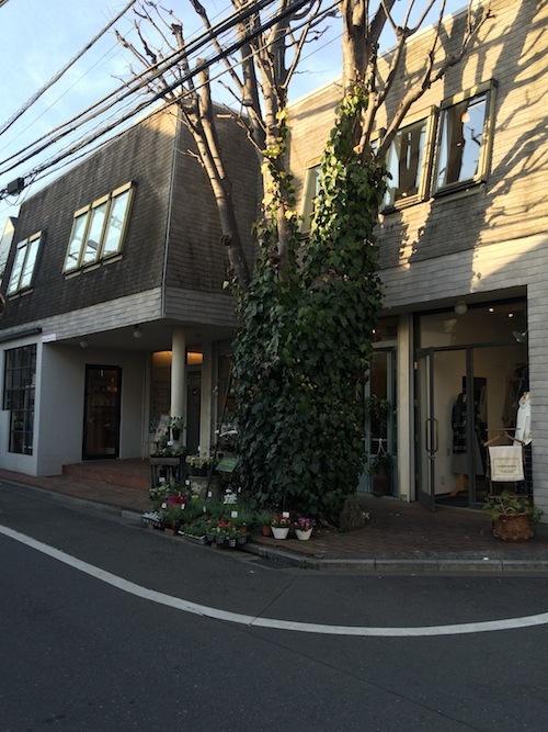 Saliちゃんと吉祥寺_f0324766_10551991.jpg