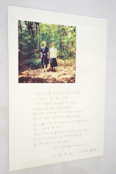 【3/17〜3/29】「白い山 青い林」大島奈王 郷間夢野_b0184796_11330348.jpg